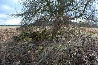 The remains of Clipstone Peel